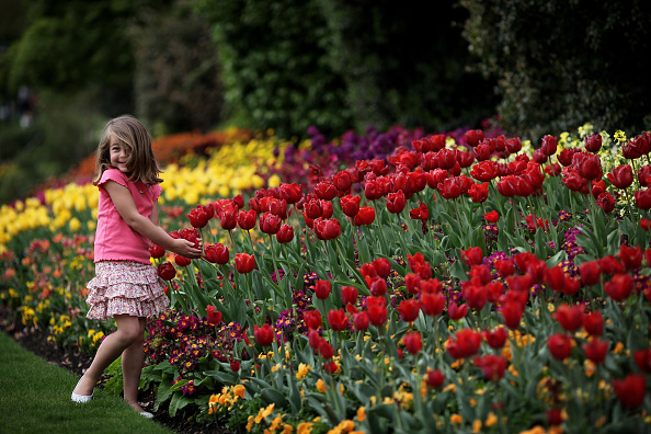 Springtime「Londoners Enjoy The Warm Spring Weather」:写真・画像(4)[壁紙.com]