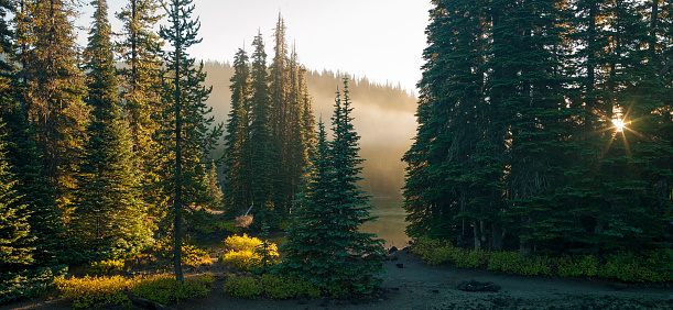 Fog「A campground located at Devils Lake on Central Oregon.」:スマホ壁紙(16)