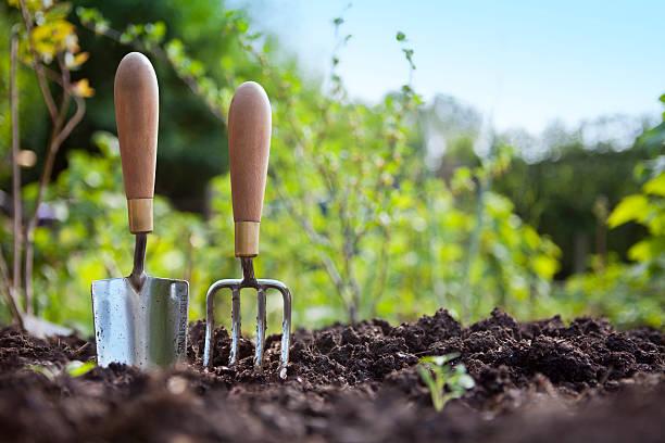 Gardening Hand Trowel and Fork Standing in Garden Soil:スマホ壁紙(壁紙.com)