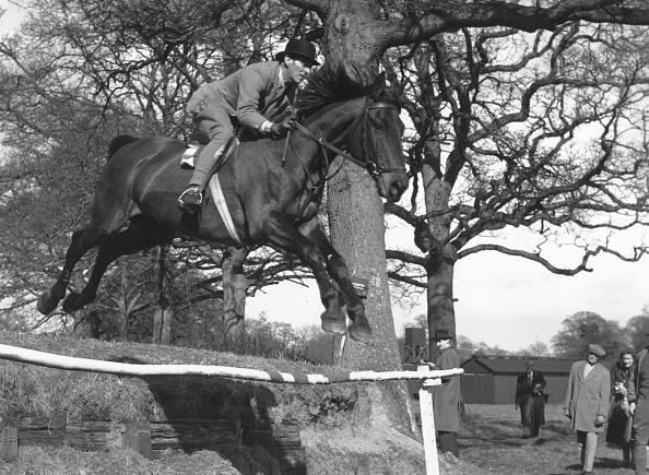 Domestic Animals「Horse Show Jumping」:写真・画像(14)[壁紙.com]