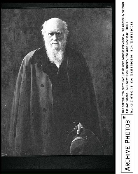 Completely Bald「Charles Darwin Portrait」:写真・画像(13)[壁紙.com]