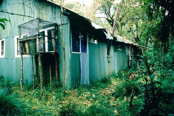 Dian Fossey「Dian Fossey's Cabin」:写真・画像(2)[壁紙.com]