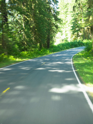 Hoh River Valley「USA, Washington, Olympic National Park, roadway in Hoh Rainforest」:スマホ壁紙(9)