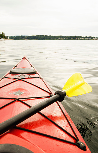 Olympia - Washington State「USA, Washington State, Olympia, Kayaking on lake」:スマホ壁紙(16)