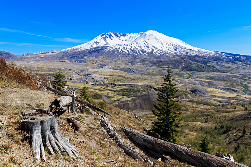 Active Volcano「USA, Washington, Mount St. Helens as seen from Johnston Ridge Observatory and damage in landscape from eruption」:スマホ壁紙(8)