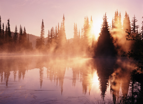 太陽「USA, Washington, Mount Rainier National Park, fog rising from lake」:スマホ壁紙(12)