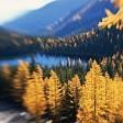オカナガン国定森林壁紙の画像(壁紙.com)