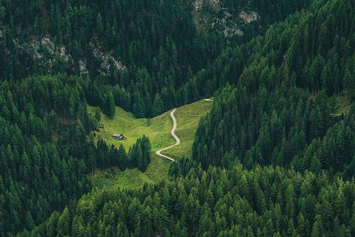 Chalet「remote mountain chalet in forest」:スマホ壁紙(15)