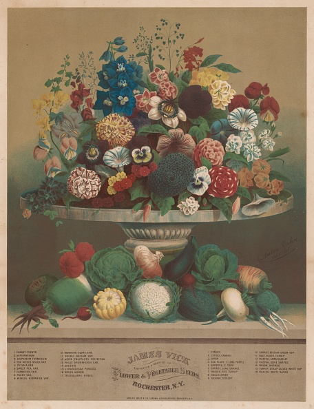 Lithograph「Flowers And Vegetables」:写真・画像(6)[壁紙.com]