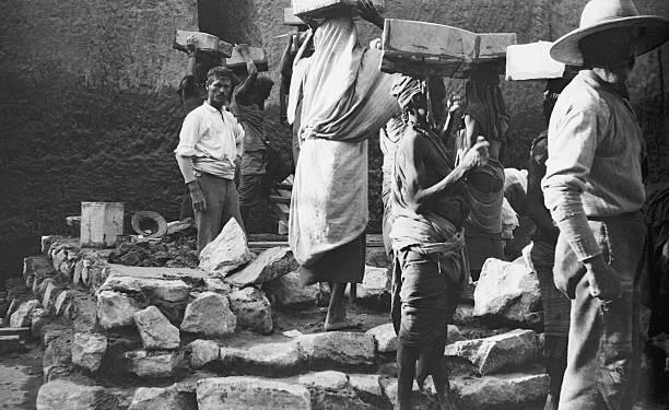 Archaeologist In Egypt:ニュース(壁紙.com)