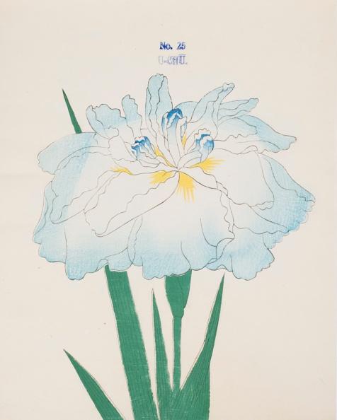 Light Blue「U-Chu」:写真・画像(8)[壁紙.com]