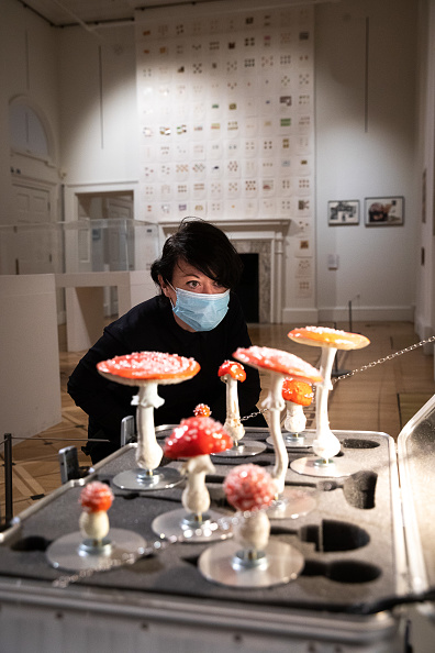 Enjoyment「Somerset House Reopens To The Public After Lockdown」:写真・画像(19)[壁紙.com]