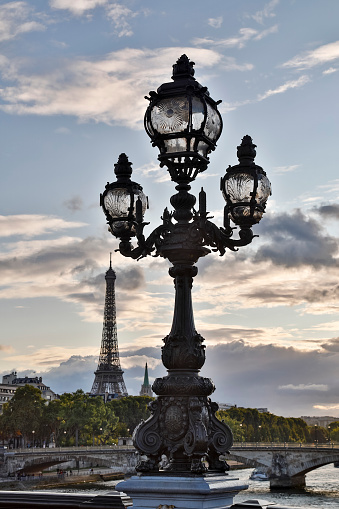 Gas Light「Pont Alexandre III bridge Paris」:スマホ壁紙(7)