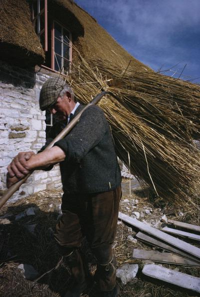 Travel Destinations「Work For Thatched Roof」:写真・画像(19)[壁紙.com]