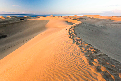 Atlantic Islands「Maspalomas sand dunes at sunrise with the sea in the background」:スマホ壁紙(0)