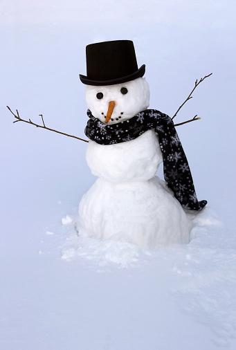 雪だるま「裏庭のスノーマン」:スマホ壁紙(14)