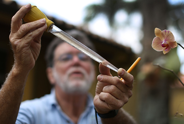 Insecticide「Florida Officials Increase Mosquito Prevention Spraying To Curb Spread Of Zika Virus」:写真・画像(16)[壁紙.com]