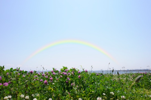 虹「Grasslands with clover and rainbow overhead. Ota Ward, Tokyo Prefecture, Japan」:スマホ壁紙(3)