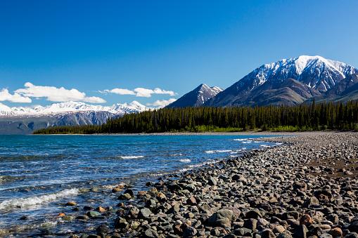 Yukon「View of the shoreline of Kluane Lake in the Yukon Territory, Canada, summer」:スマホ壁紙(7)