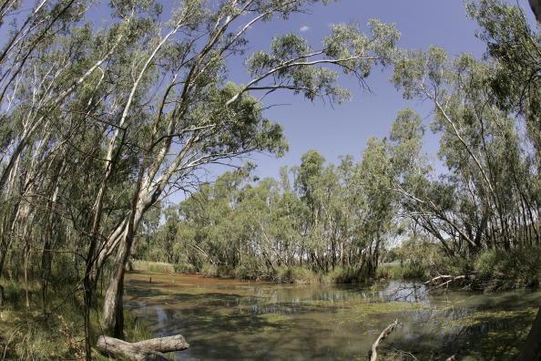 River「Murray Darling Basin In Crisis」:写真・画像(15)[壁紙.com]