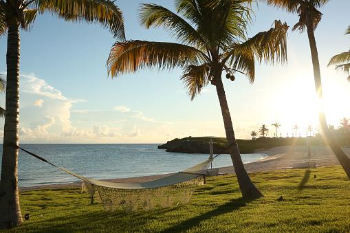 Hammock「A view of the Caribbean with hammocks」:スマホ壁紙(10)