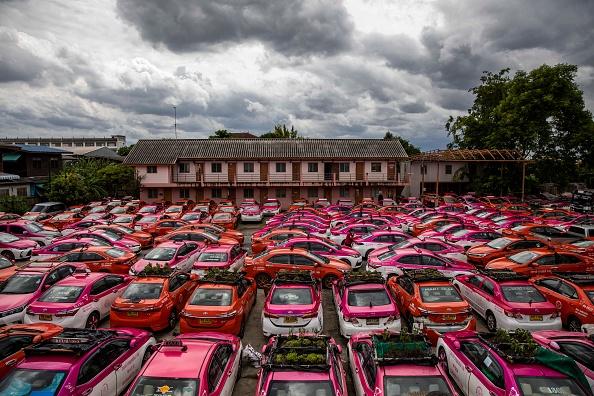 Bestof「Bangkok's Taxis Turn Into Gardens As Low Tourism Bites」:写真・画像(9)[壁紙.com]