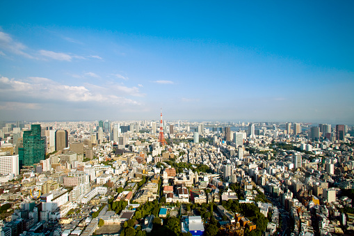 Tokyo Tower「View of the Roppongi District in Tokyo from Mori Tower」:スマホ壁紙(5)