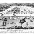 サバンナ川壁紙の画像(壁紙.com)