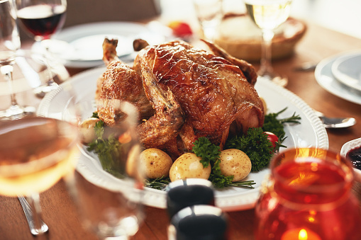 Turkey - Bird「You can't say no to that turkey lunch」:スマホ壁紙(10)