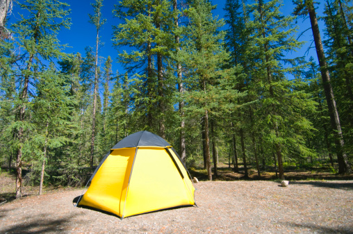 Dome Tent「Canada, Alberta, Banff National Park, dome tent in forest」:スマホ壁紙(7)