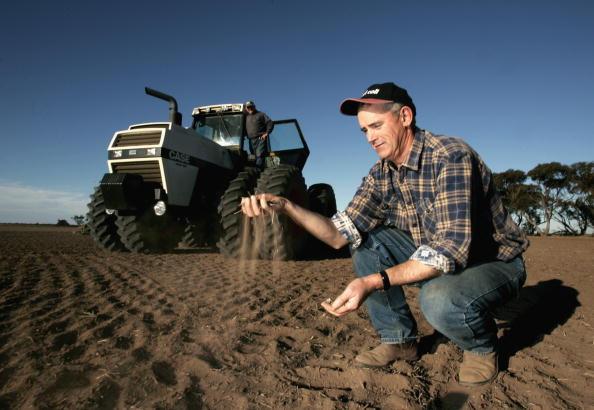Canola「Victorian Farmers Battle Drought Conditions」:写真・画像(18)[壁紙.com]