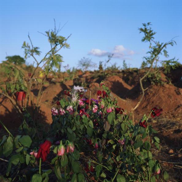 Tom Stoddart Archive「Chunga Cemetery」:写真・画像(7)[壁紙.com]