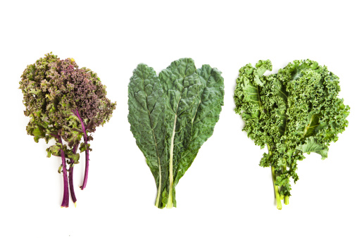 Leaf Vegetable「Three leafy kale plants」:スマホ壁紙(10)