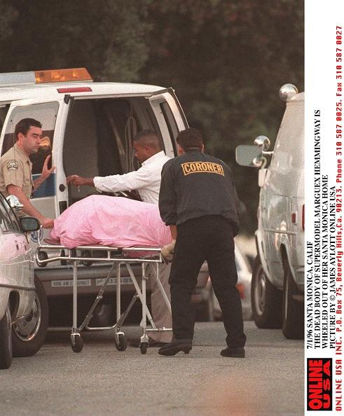 Nouvelle-Aquitaine「A Tragic End」:写真・画像(14)[壁紙.com]