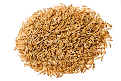 Seed「Barley」:スマホ壁紙(6)
