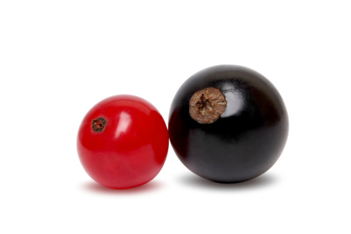 Black currant「Black And Red Currant Isolated On White」:スマホ壁紙(9)