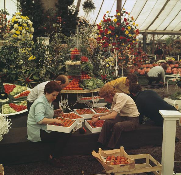 flower「Chelsea Flower Show 1970」:写真・画像(15)[壁紙.com]