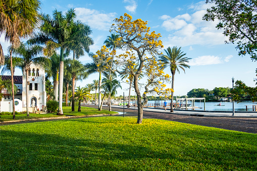 Boulevard「Old Northeast Neighborhood, Saint Petersburg, Florida」:スマホ壁紙(17)