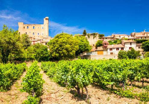 France「Castle and vineyard in Chateneuf-du-Pape, Provence, France.」:スマホ壁紙(19)