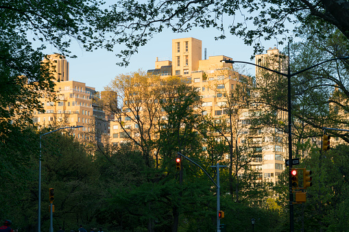 Sunset「The sunset illuminates Central Park East Residences at dusk in Central Park New York.」:スマホ壁紙(14)