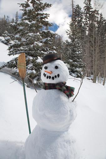 雪だるま「Snowman in rural forest」:スマホ壁紙(6)