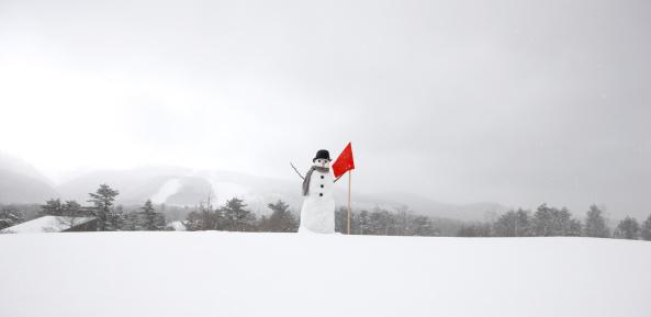 雪だるま「Snowman in snow」:スマホ壁紙(2)