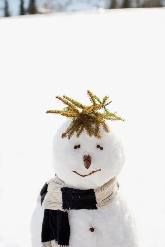 雪だるま「スノーマンフィールド」:スマホ壁紙(11)
