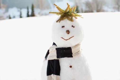 雪だるま「スノーマンフィールド」:スマホ壁紙(2)