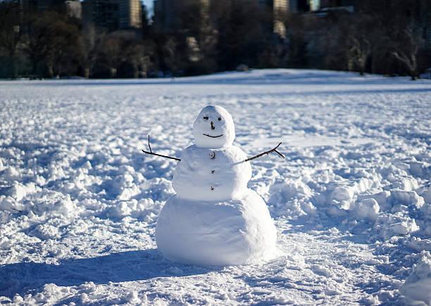 Snowman in field:スマホ壁紙(壁紙.com)