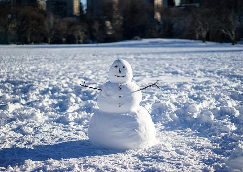 雪だるま「Snowman in field」:スマホ壁紙(8)