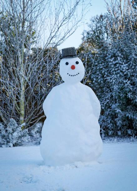 snowman in garden with hat:スマホ壁紙(壁紙.com)