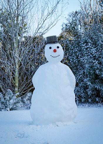 雪だるま「snowman in garden with hat」:スマホ壁紙(18)