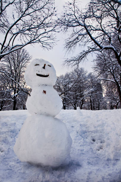 Snowman in park:スマホ壁紙(壁紙.com)