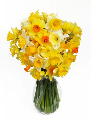 水仙「Large bunch of mixed daffodils from English garden」:スマホ壁紙(17)